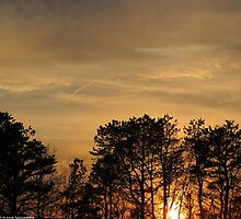 Golden Sky by anneseyeview