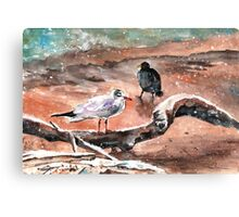 Birds On Lake Constance In Winter Canvas Print