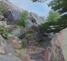 Stone Steps by Timothy  Ruf