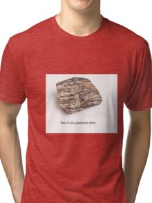 the gneissest shirt Tri-blend T-Shirt