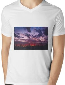 Nature's Paintbrush Mens V-Neck T-Shirt