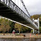 Under Chester Suspension Bridge by AnnDixon