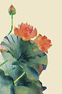Lotus bloom by SuburbanBirdDesigns By Kanika Mathur