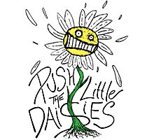 Push the Little Daisies Photographic Print