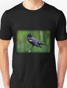 Blackbird Balance Unisex T-Shirt