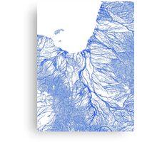 Gulf floodplains of Queensland, Australia Canvas Print