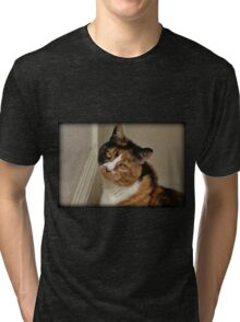 Inquisitive Tri-blend T-Shirt