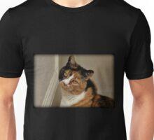 Inquisitive Unisex T-Shirt