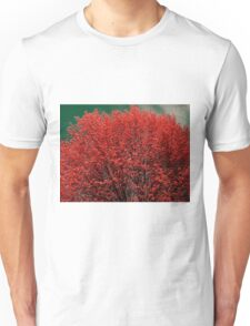 Tree is on fire T-Shirt