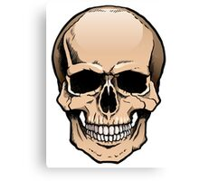 Human skull frontal view Canvas Print