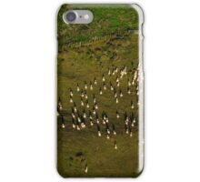 Sheep against the Fence iPhone Case/Skin
