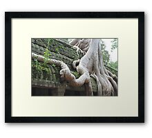 Roots Gone Wild, Ta Prohm, Angkor, Cambodia Framed Print