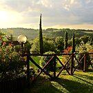Tuscan Light by Barbara  Brown