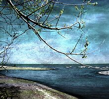 Barrier Beach - Old Woman Creek by SRowe Art