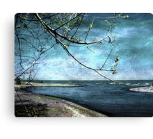 Barrier Beach - Old Woman Creek Canvas Print