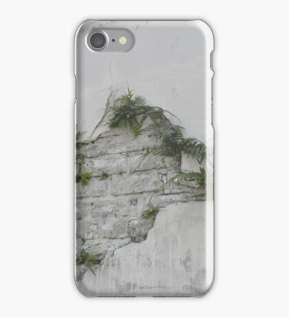 Fern Covered Wall at Lafayette Cemetery in New Orleans  iPhone Case/Skin