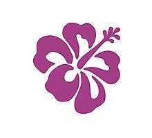 Hibiscus Flower Bloom Photographic Print