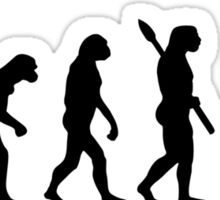 Evolution Yoga Sticker