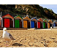 Beach hut beauty. Photographic Print