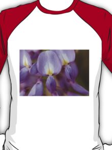wisteria blooming T-Shirt