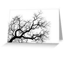 Contorted branch Greeting Card