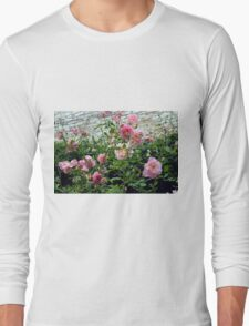 Pink gentle roses in the garden Long Sleeve T-Shirt