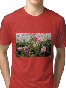 Pink gentle roses in the garden Tri-blend T-Shirt