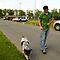 Walk Walk Walking The Dog