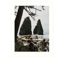 Sea Stack Washington Beach Art Print