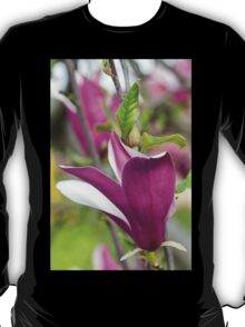 flowering magnolia T-Shirt