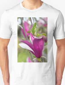 flowering magnolia T-Shirt