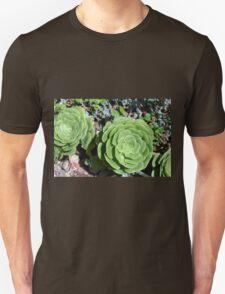 Spherical succulents in the garden Unisex T-Shirt
