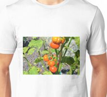 Tomatoes growing in the garden Unisex T-Shirt