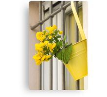 yellow flowers on the balcony Canvas Print