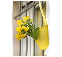 yellow flowers on the balcony Poster