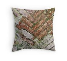 antique ancient walls of castle Throw Pillow