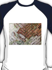 antique ancient walls of castle T-Shirt