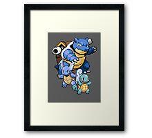 Squirtle Evolutions Framed Print