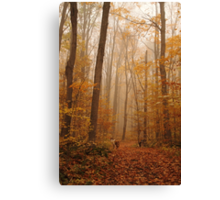 Never-Ending Road Canvas Print