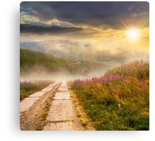 wild flowers on the hillside at sunset Canvas Print