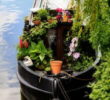 Houseboat horticulture by missmoneypenny