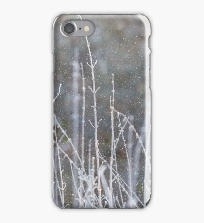 Winter Grass Snow Scene iPhone Case/Skin