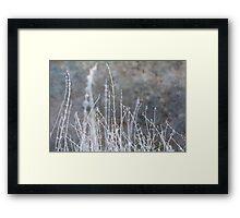 Winter Grass Snow Scene Framed Print