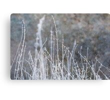 Winter Grass Snow Scene Canvas Print