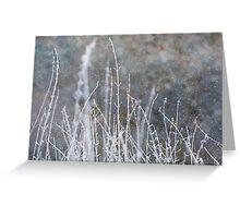 Winter Grass Snow Scene Greeting Card