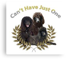Irish Water Spaniel Can't Have Just One Canvas Print