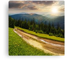 road through conifer forest in mountains at sunset Canvas Print