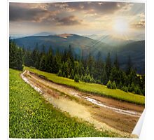 road through conifer forest in mountains at sunset Poster