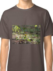 meadow at sunset Classic T-Shirt