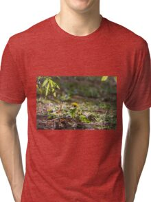 meadow at sunset Tri-blend T-Shirt